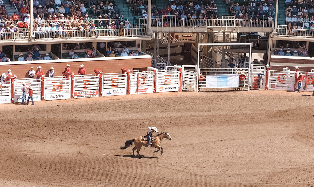 How to Spend a Day at the Calgary Stampede