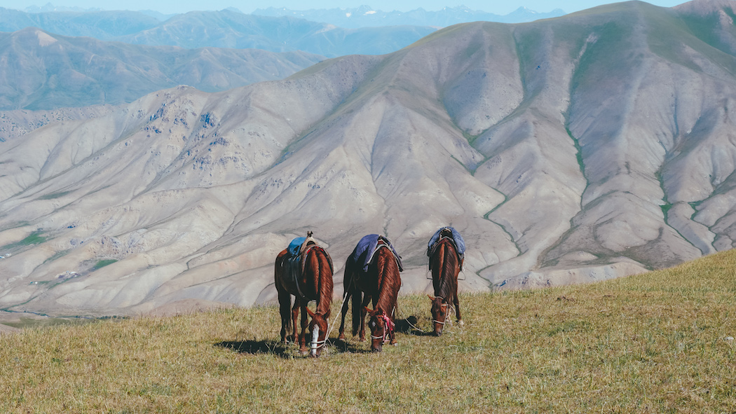 10 things to know before your trek to Song Kol Lake, Kyrgyzstan